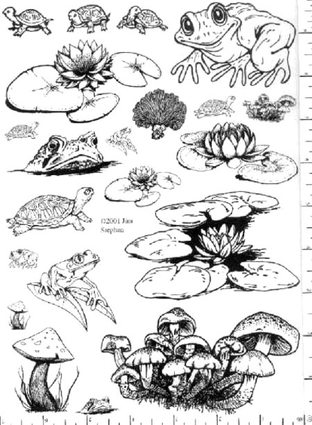Jim Stephan Rubber Ink Art - 84: Froggies, Lilies, & Shrooms